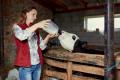 «Сімейні молочні ферми» створюють молочний кластер на Сумщині
