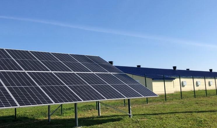 «Агідель» облаштувала сонячну електростанцію на птахофермі