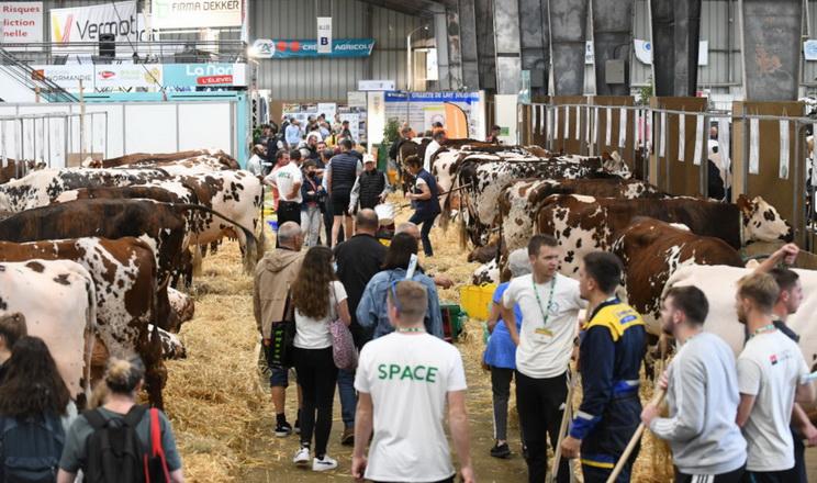 Цього року SPACE стала єдиною виставкою у світі для всіх галузей тваринництва
