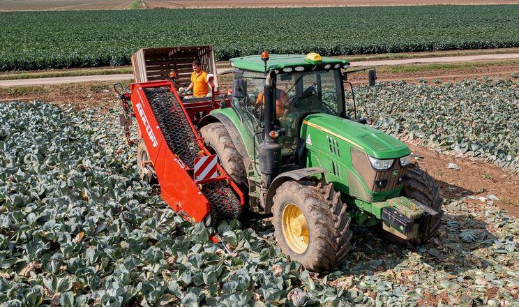 Grimme покаже найніжніший капустозбиральний комбайн