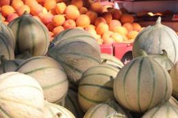 Органічне овочівництво зменшує трудову міграцію