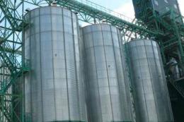 «Сервіс Грейн» прийняв понад 21 тис. тонн соняшника