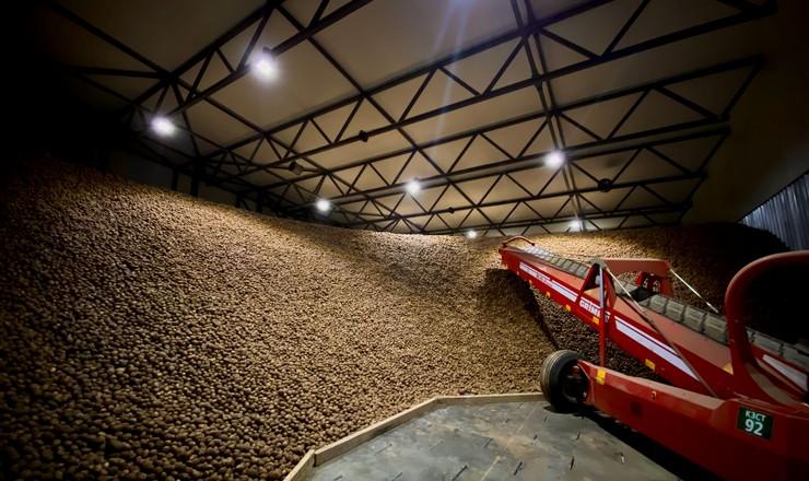 «Контінентал» запустив найсучасніше в Україні картоплесховище