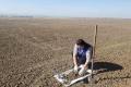 На Івано-Франківщині спрогнозували розвиток шкідників у 2022 році