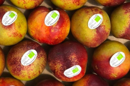 Фермер розповів як створити органічні острівці в супермаркетах