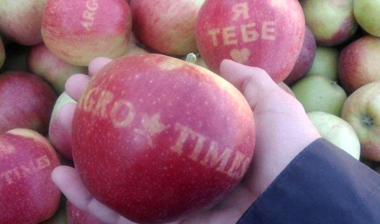 Садівники Дніпропетровщини вирощують яблука з написами