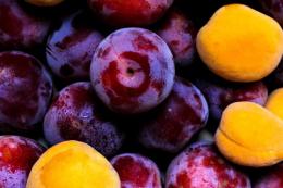 Одеські садівники відмовляються від яблук на користь слив та абрикос