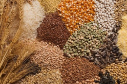 Аграрії експортували понад 17,4 млн тонн зерна